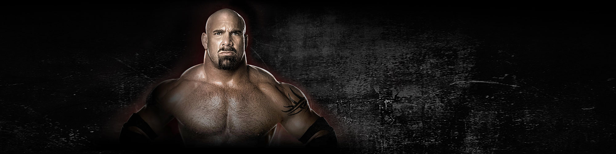 Bill Goldberg - Official Website